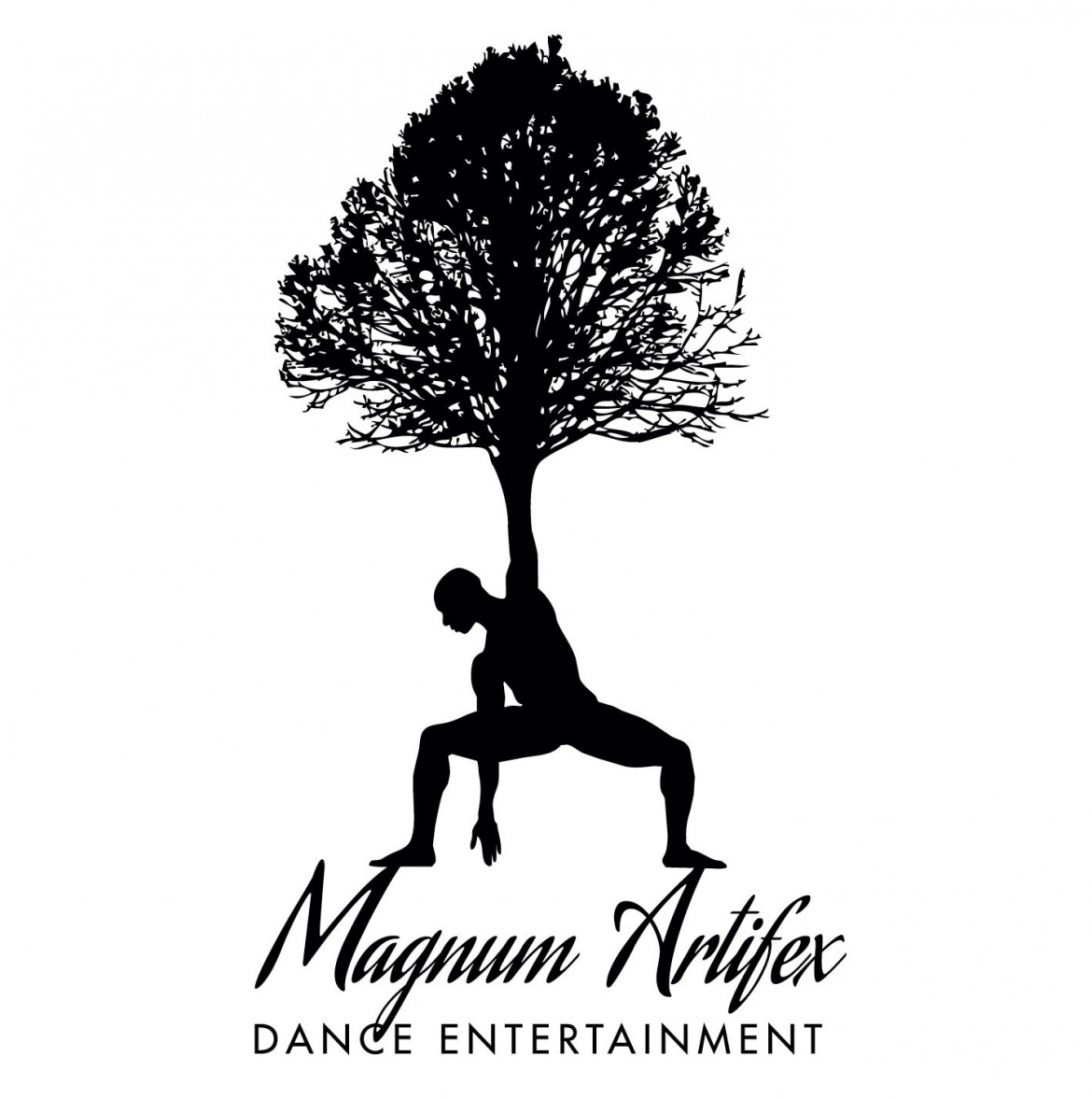 Magnum Artifex Dance Entertainment Leeds